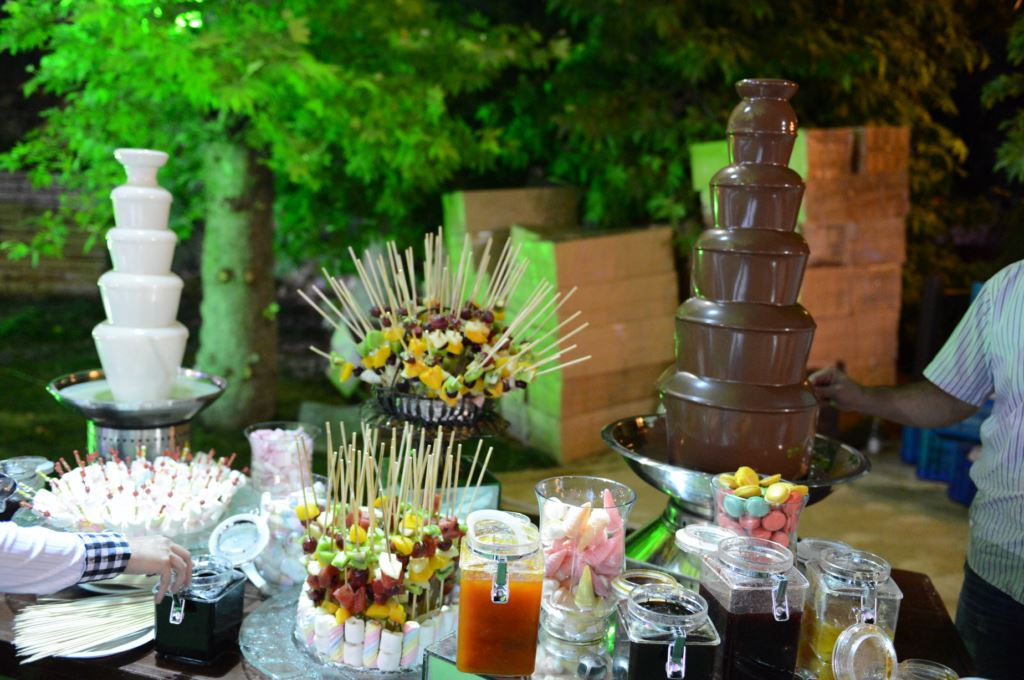 Catering (25)
